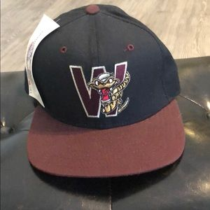Vintage SnapBack Wisconsin rattlers hat